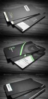 3 in 1 Business Card Bundle #3 by calwincalwin