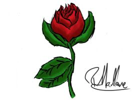 A Rose For My Rose by aguba
