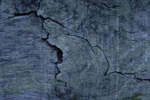 Blue Wood Cracks 10 by Variety-Stock