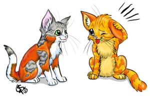 Kittens by saboo