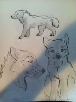 Mo Wolf Sketches by Angelwolf778