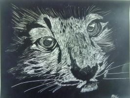 Snow Leopard ScratchBoard by PaoloNormalState