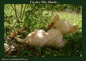 In The Shade by DoloAndElectrik