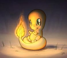 Chilly Charmander by TheWizpir