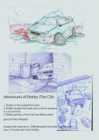 Shelby CSX Story Panels by supercrazzy