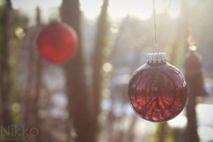 A delighted christmas time. by NikolasBrummer