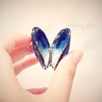 Shell of a Butterfly by TheSaval