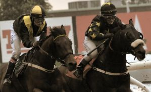 A day at the Races -neck and neck by AndersStangl