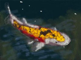 Art Academy 3DS: Koi by dklproductions
