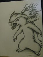 my attempt at drawing Typhlosion by ownerfate