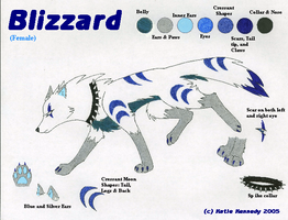 Blizzard Character Sheet by Sessko