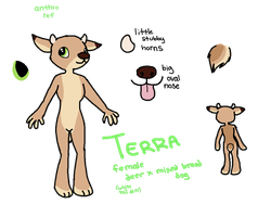 terra anthro ref by ditchhead