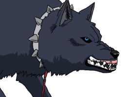 wolfs rain blue by silverwolfproduction