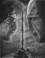 Harry Potter and the Deathly Hallows - Face off by y3nd0