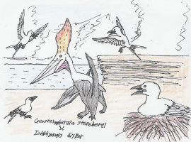 Pterosaur and birds by Fingertier