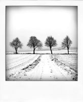 Poladroid Scapes 03 by DpressedSoul