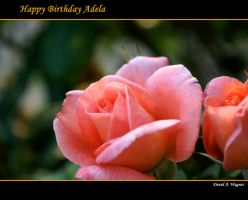 Happy Birthday Adela by David-A-Wagner