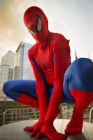 Spiderman by Dinnerfortwo