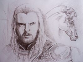 Eomer of the Riddermark by phantomphreaq