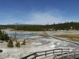 Norris Geyser Basin Path by rioka