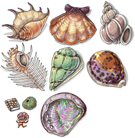 Delphi Shell Game Pieces by EmphasisMine
