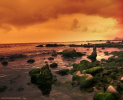Lost Beach by sara-nmt
