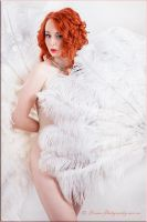 White Feathers by DreamPhotographySyd