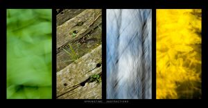 Springtime Abstractions by sonofsanta