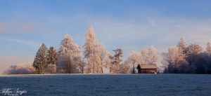 winter by stefansergio