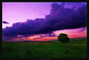 Sunset in Bukowina by BogdanEpure
