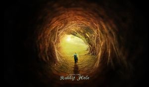 ::down the rabbit hole:: by imarty