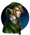 Link - Twilight Princess by Ranefea
