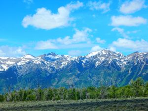 East Yellowstone Mountains by IntarsiaArtist