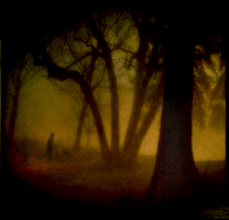 Whose Woods Are These by intao