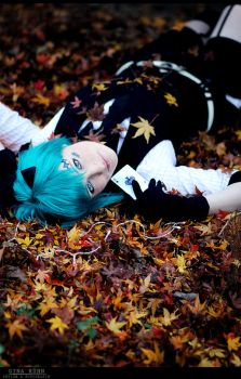 Vocaloid - One Pair Two Pair by aco-rea