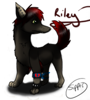 Riley by Sipper-Paws