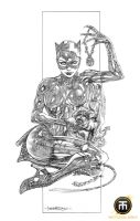CATWOMAN by harveytolibao