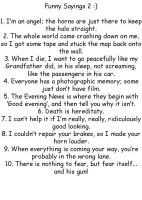 Funny Sayings 2 by GoddessofHockey