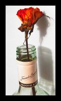 flower and a bottle 2.1 by JamesDManley
