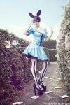 _in wonderland. by Bloddroppe