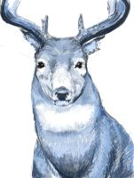 blue deer digital painting by loveandasandwich