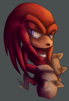 Knuckles by captainkayla56