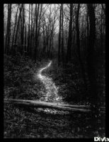 path to a better life by divn
