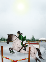 Oden: Showjumping at BCS Christmas Show 2013 by Moshpikachu