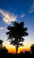 Sunrise at Pines Taman Dayu by iwaniga