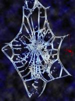 Spider Web by Snayke180