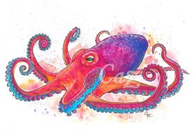 Vibrant Octopus Fine Art Watercolor by CazziArt