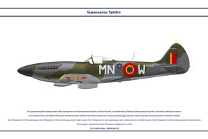 Spitfire Mk XIV Belgium 1 by WS-Clave