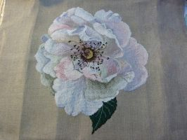 Vine Rose Cross Stitch by EverildWolfden