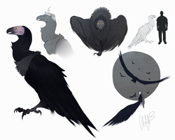 Beurghes - Vulture Form by Iseijin
